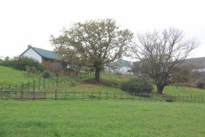TPAS_River_Cottage_image_13