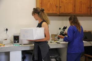 TPAS Farm services Reproductive Services Image 02
